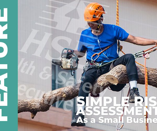 Simple Risk Assessments as a Small Business